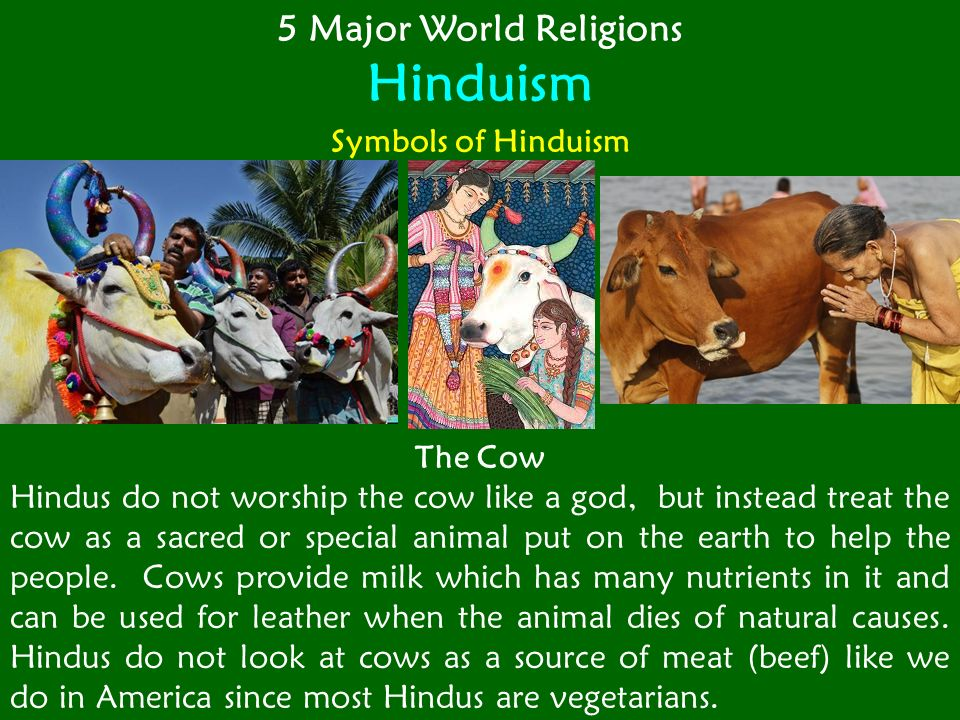 buddhism a major world religion Which religion of the 5 major world religions believes suffering is caused by selfishness and people must follow the eightfold/middle path.