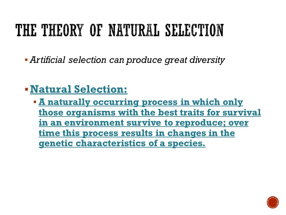 diagram natural selection artificial venn cyberchalky page cyberchalky!  what does domestic mean?  domestic no longer wild, but has been6   artificial