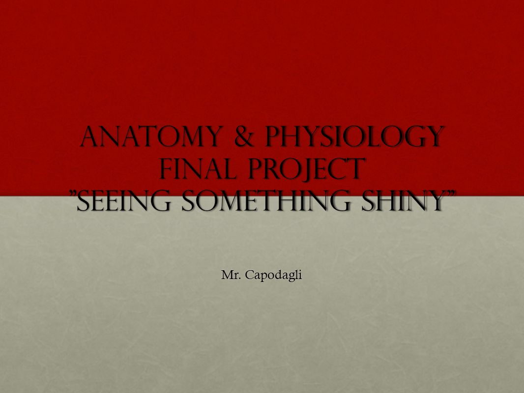 Anatomy & Physiology Final Project \