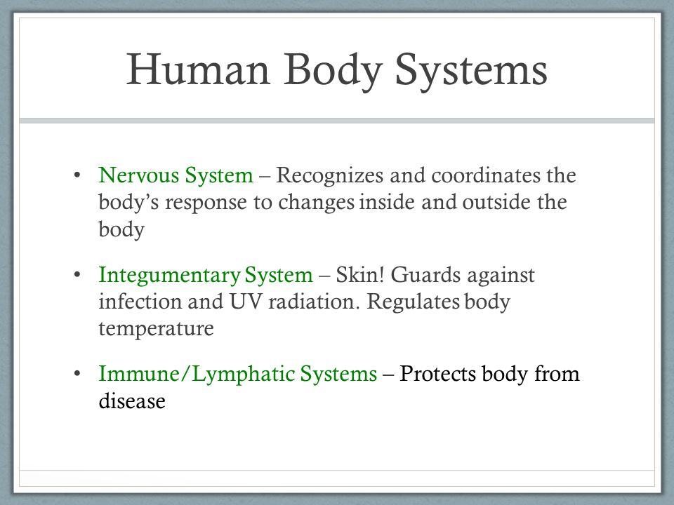 Organization of the Human Body. Do Now There are 11 human body ...