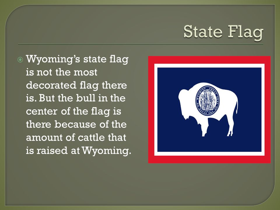Facts on the country Wyoming   Wyoming is the 10 largest