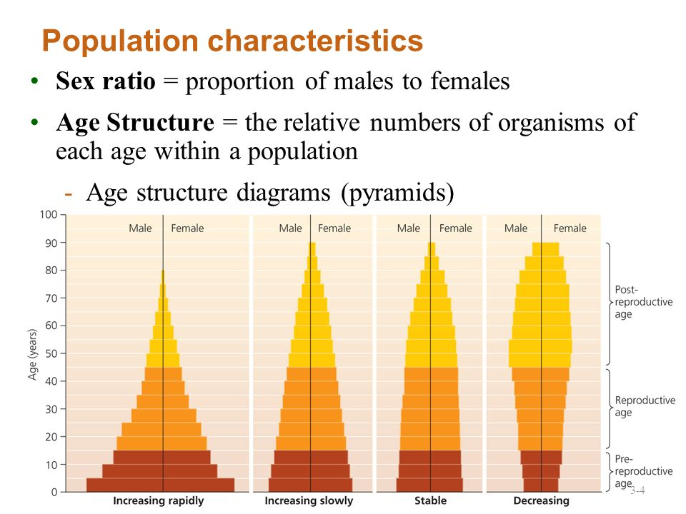 2010 Pearson Education Canada Lecture 4 Human Population Dynamics