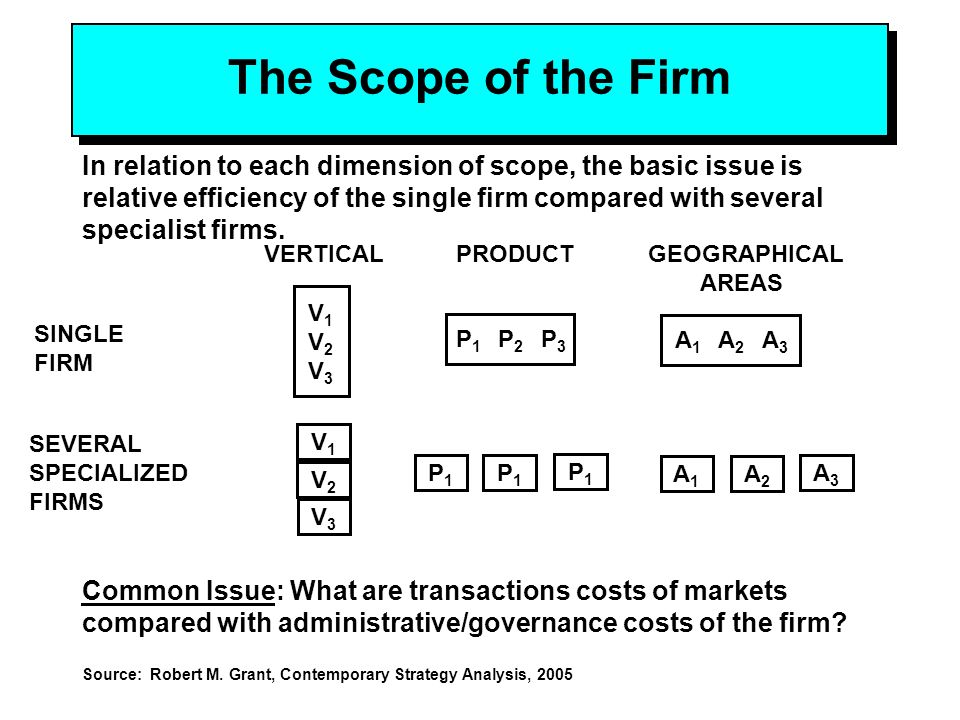 vertical scope of the firm what are the appropriate vertical