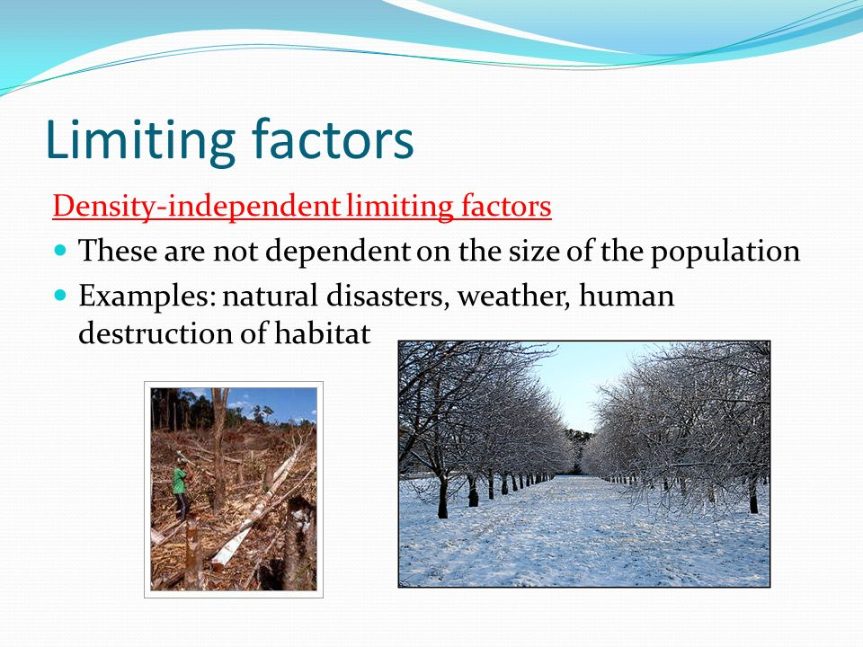 Populations Are Limited Limiting Factors Things In The Environment