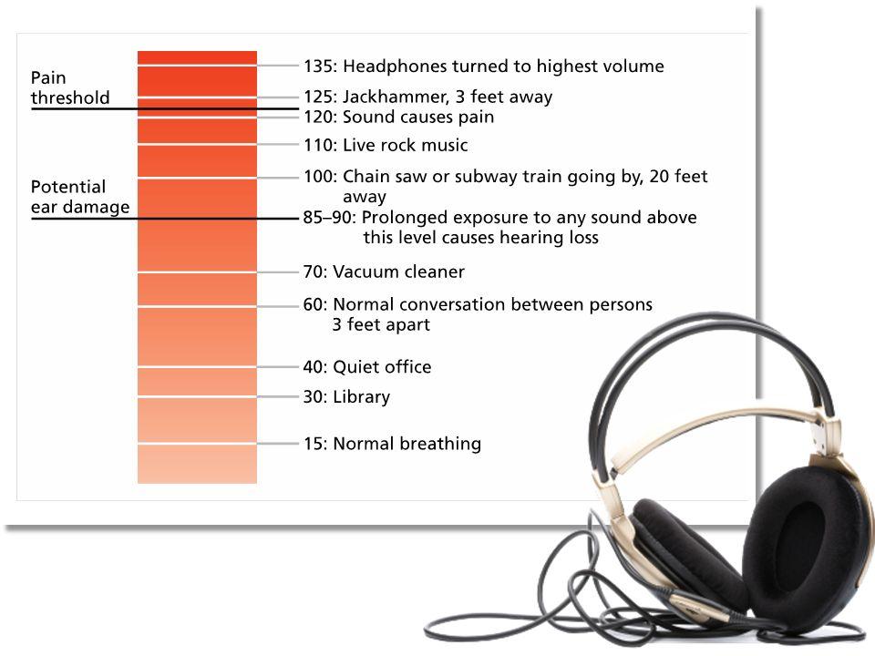 Sound/Hearing Sensation & Perception  Characteristics of Sound