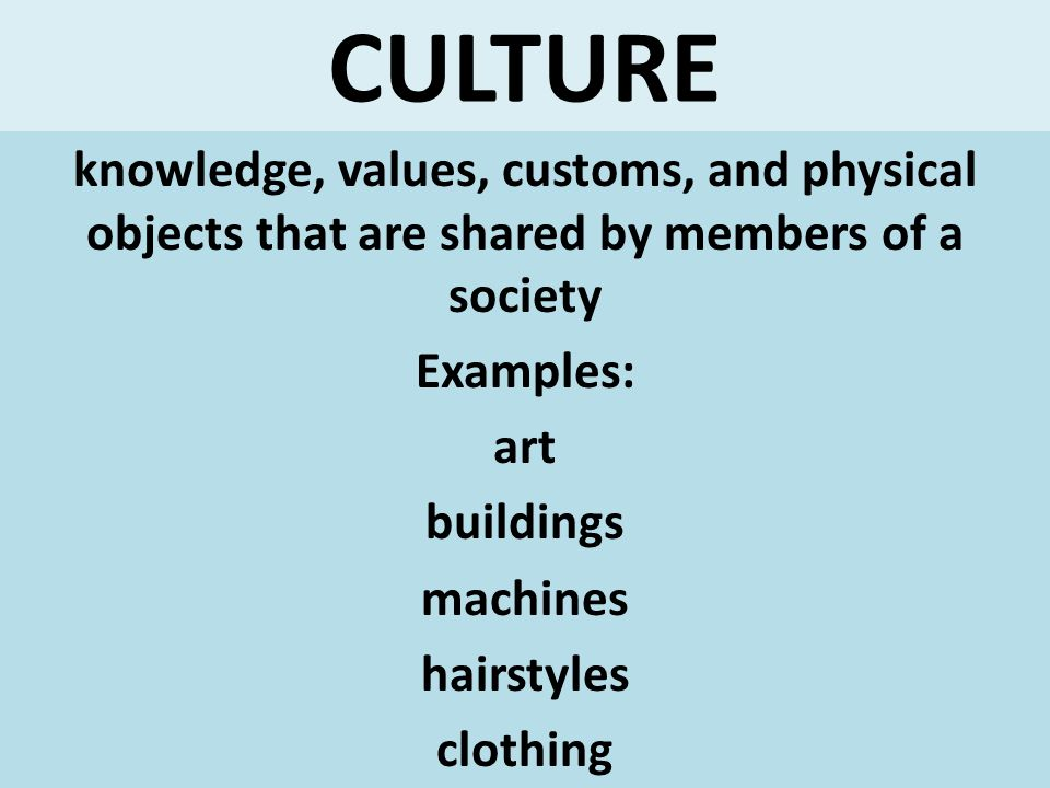CULTURE knowledge, values, customs, and physical objects that are