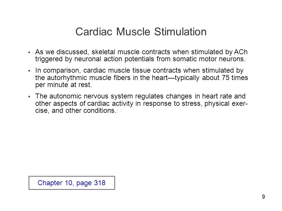 More About Cardiac And Smooth Muscle Tissue Ppt Download