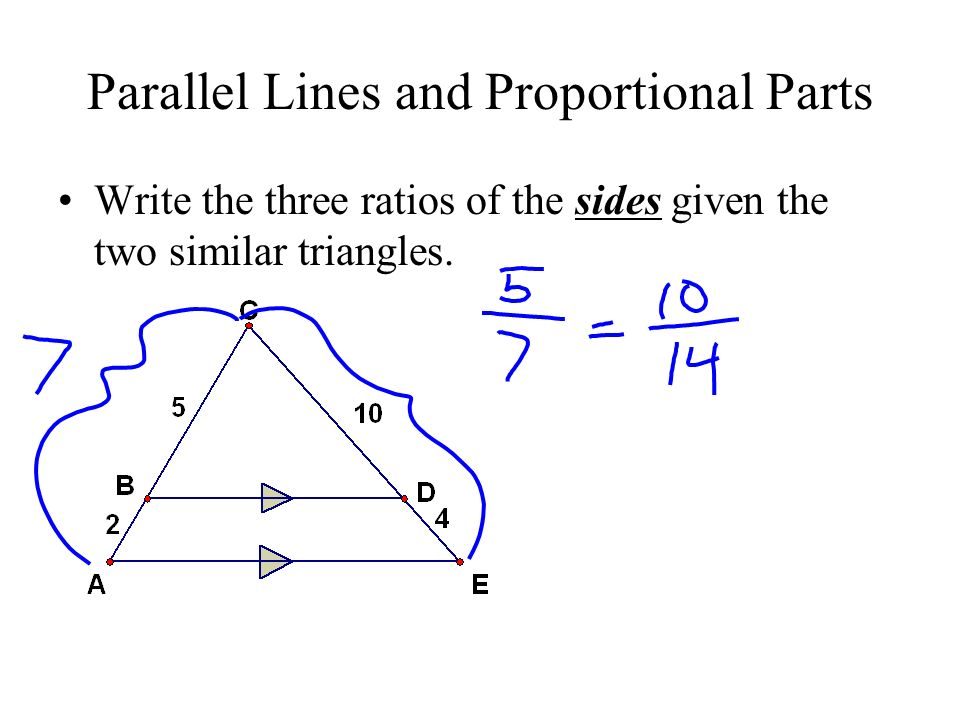 parallel lines and proportional parts write the three ratios of the