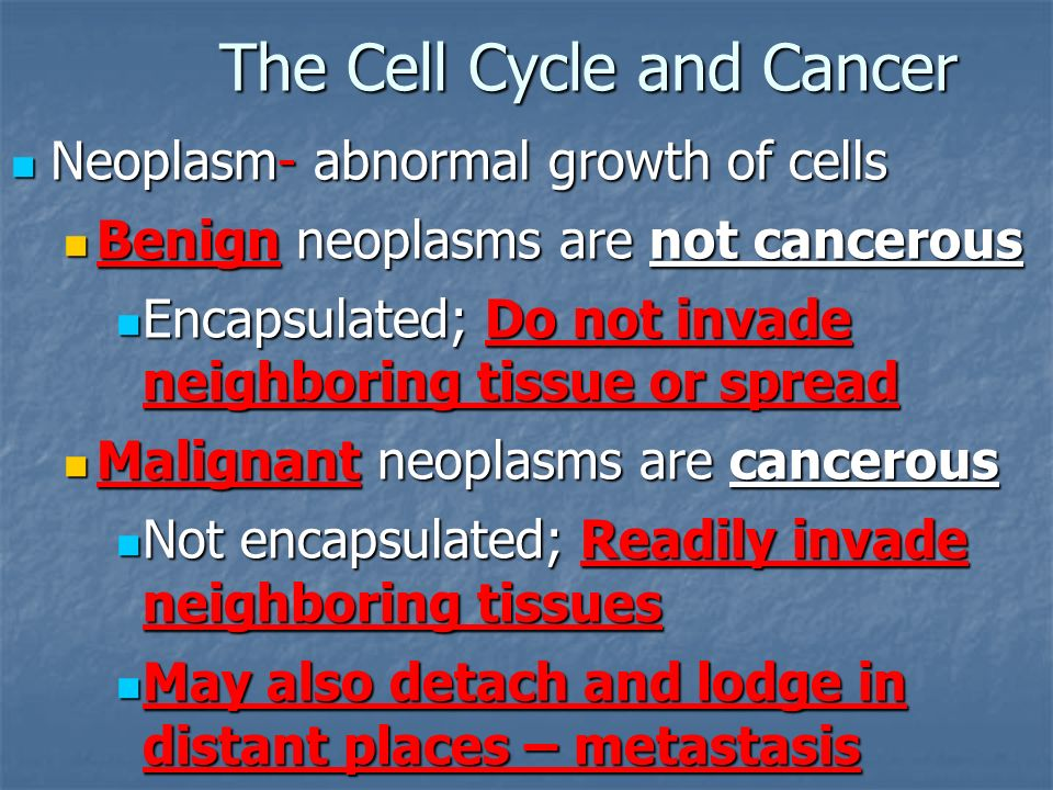 The Cell Cycle and Cancer Neoplasm- abnormal growth of cells Neoplasm- abnormal growth of cells Benign neoplasms are not cancerous Benign neoplasms are not cancerous Encapsulated; Do not invade neighboring tissue or spread Encapsulated; Do not invade neighboring tissue or spread Malignant neoplasms are cancerous Malignant neoplasms are cancerous Not encapsulated; Readily invade neighboring tissues Not encapsulated; Readily invade neighboring tissues May also detach and lodge in distant places – metastasis May also detach and lodge in distant places – metastasis