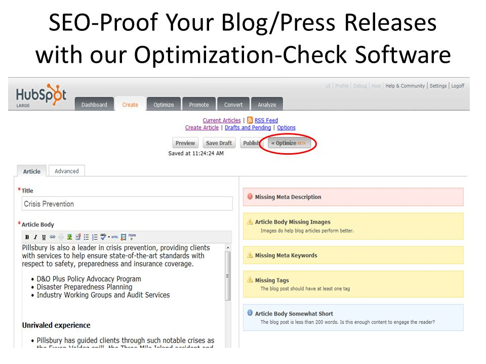 SEO-Proof Your Blog/Press Releases with our Optimization-Check Software