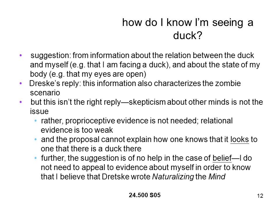 12 24.500 S05 how do I know I'm seeing a duck.