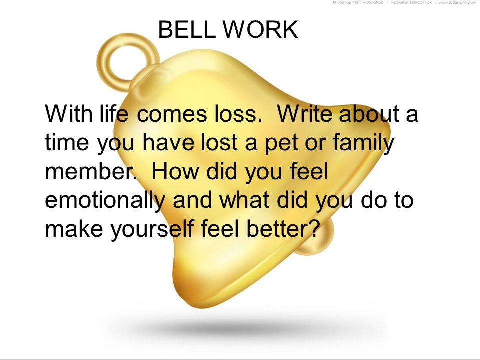 bell work with life comes loss write about a time you have lost a