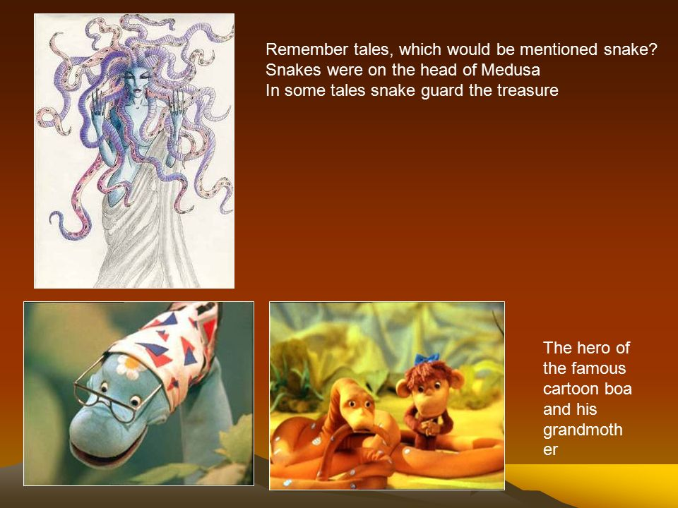 Snake Snake Its A Snake Did You See The Snake Ppt Download