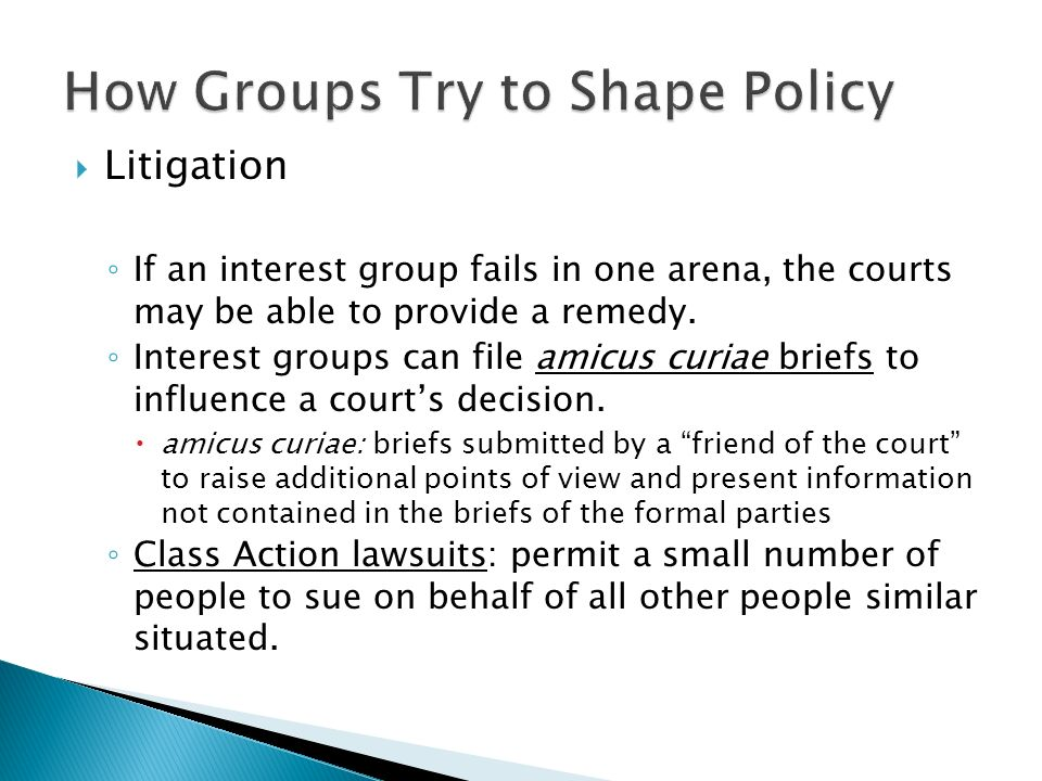  Litigation ◦ If an interest group fails in one arena, the courts may be able to provide a remedy.