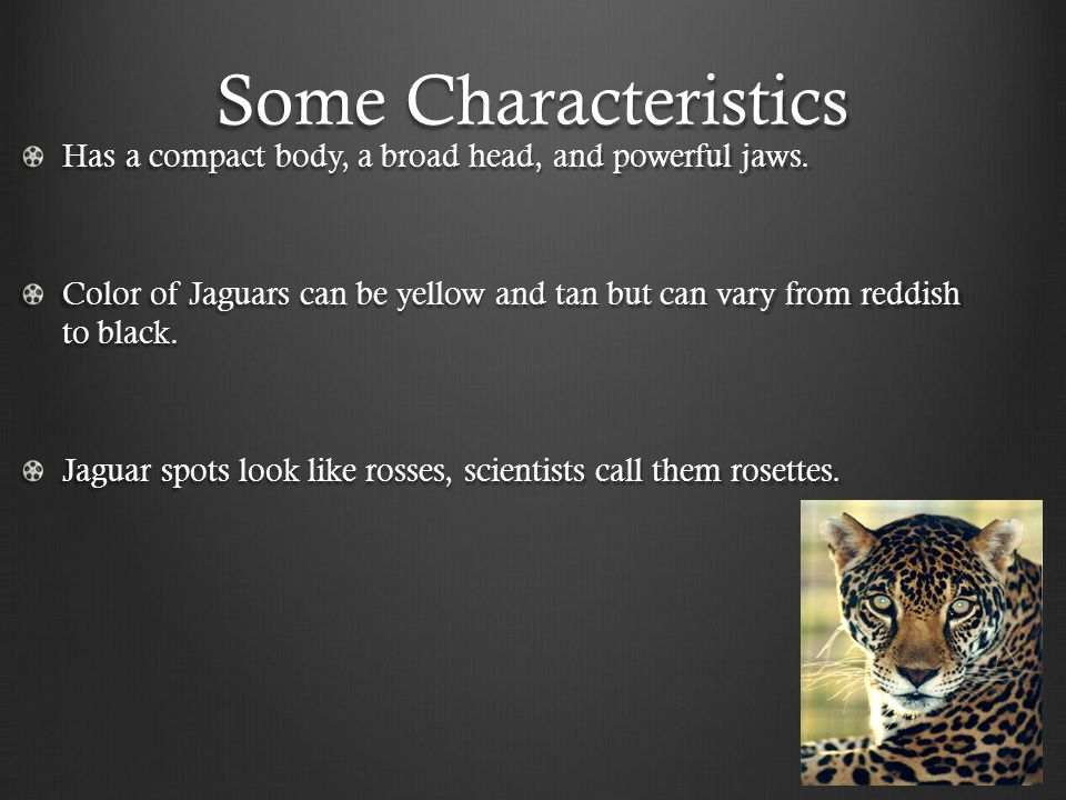 4 Some Characteristics ...