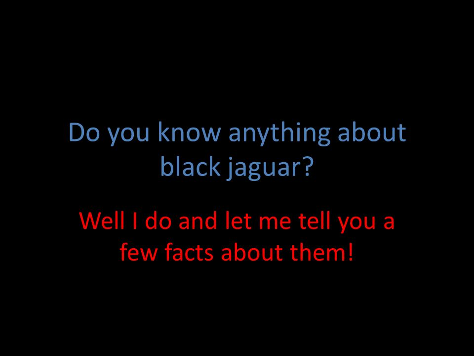 BlackJaguarBlackJaguar