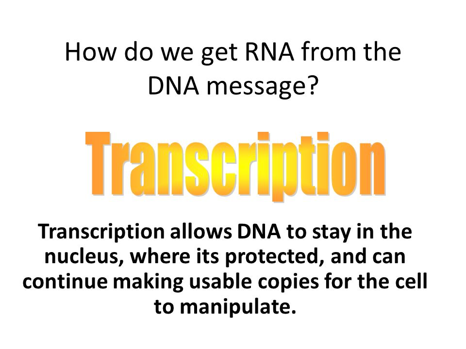 How do we get RNA from the DNA message.