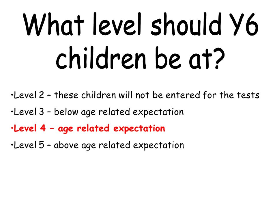 Level 2 – these children will not be entered for the tests Level 3 – below age related expectation Level 4 – age related expectation Level 5 – above age related expectation