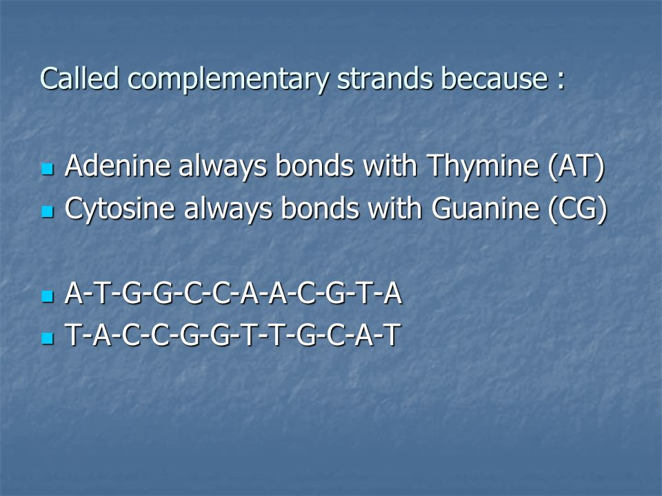 Called complementary strands because : Adenine always bonds with Thymine (AT) Adenine always bonds with Thymine (AT) Cytosine always bonds with Guanine (CG) Cytosine always bonds with Guanine (CG) A-T-G-G-C-C-A-A-C-G-T-A A-T-G-G-C-C-A-A-C-G-T-A T-A-C-C-G-G-T-T-G-C-A-T T-A-C-C-G-G-T-T-G-C-A-T