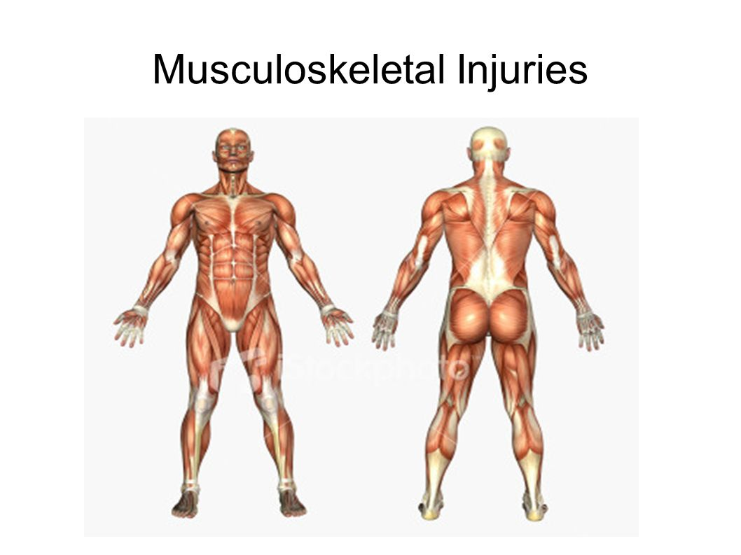 muscle injuries Muscle tears are one of the most common pathologies in sport and one of the most frequent causes of sport activity suspension the purpose of this book is to review the state of the art of the actual.