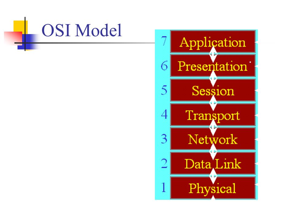 Osi Model Switches Point To Point Bridges Two Types Store Forward