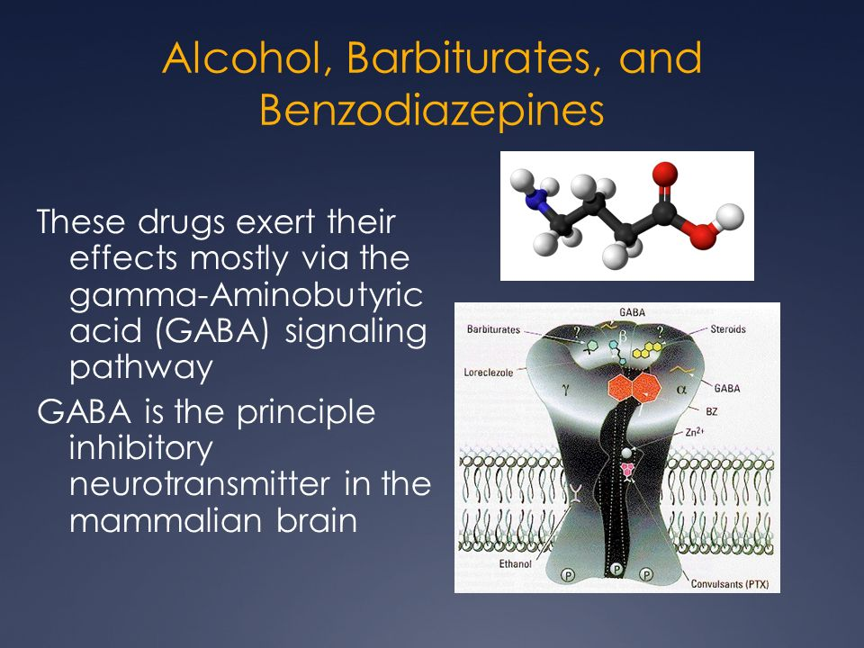 effects of alcohol on the brain essay We will write a custom essay sample on effects of alcohol on the adolescent besides memory is affected by heavy intoxicant interventions with the decryption of new memories more specifically alcohol interferes with a neurotransmitter called glutamate when nerve cells fire together.