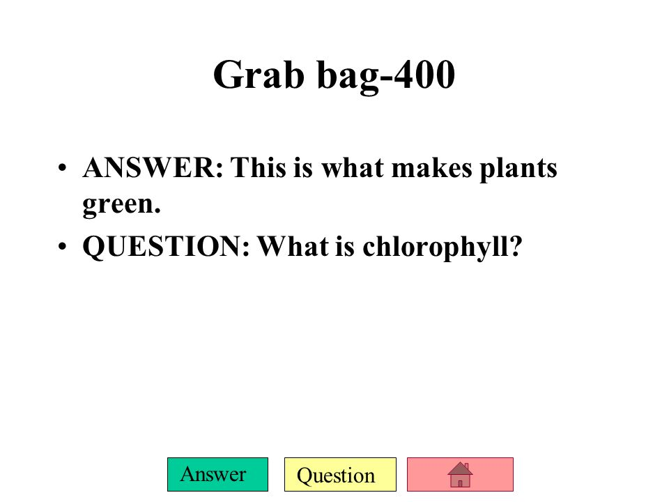Question Answer Grab bag-300 ANSWER: A is pointing at this in a plant cell.