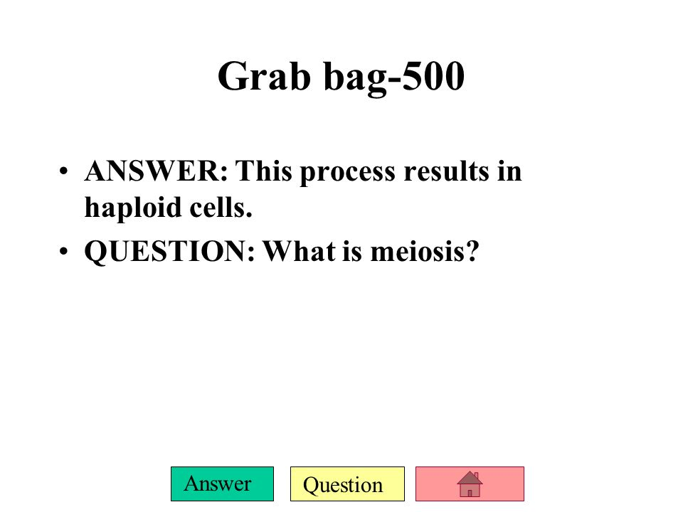Question Answer Grab bag-400 ANSWER: This is what makes plants green.