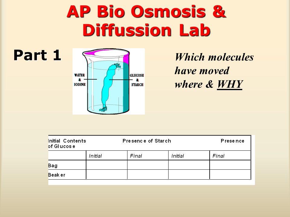 intro to ap biology