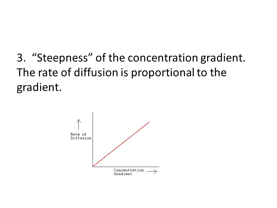 3. Steepness of the concentration gradient.
