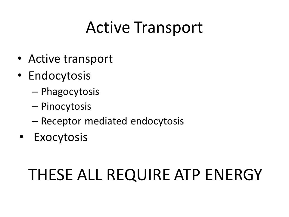 Active Transport Active transport Endocytosis – Phagocytosis – Pinocytosis – Receptor mediated endocytosis Exocytosis THESE ALL REQUIRE ATP ENERGY