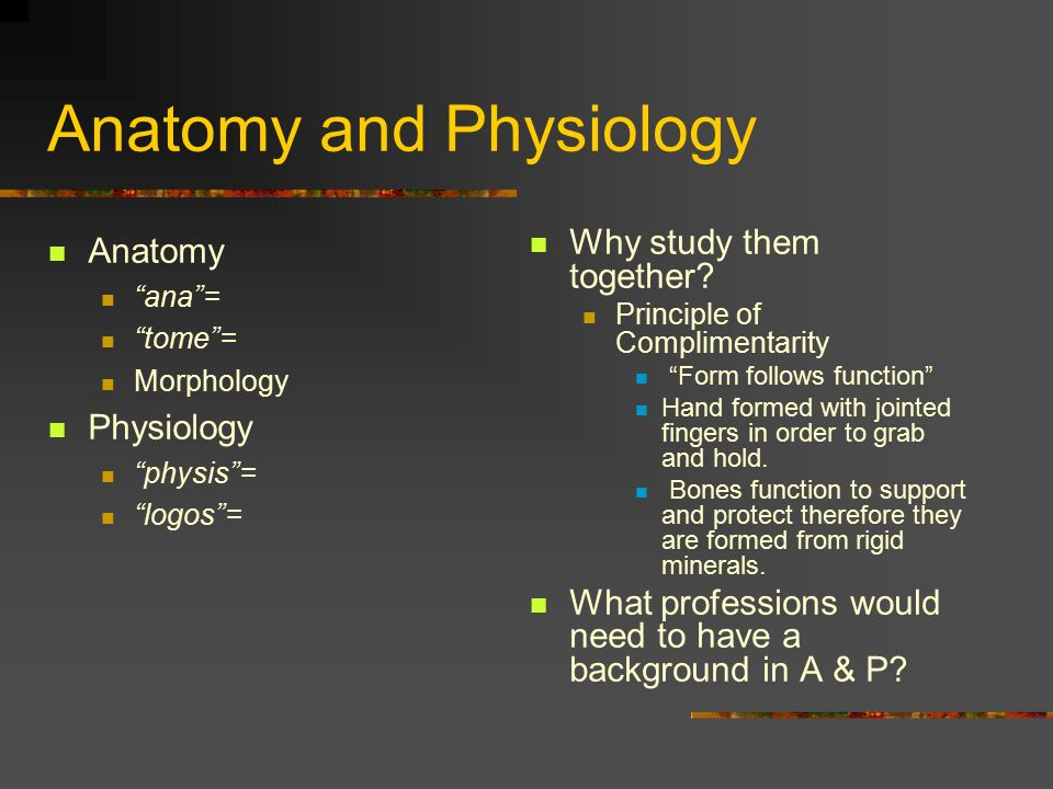 Introduction to Anatomy and Physiology. Anatomy and Physiology ...