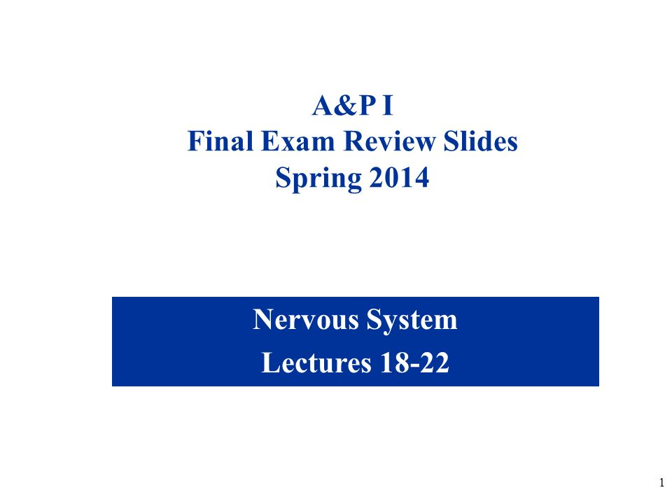 1 A&P I Final Exam Review Slides Spring 2014 Nervous System Lectures 18-22