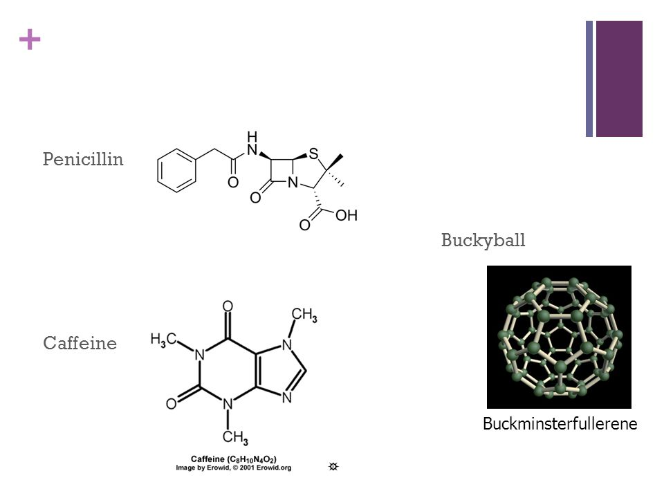 Organic Chemistry Carbon containing compounds  + Organic