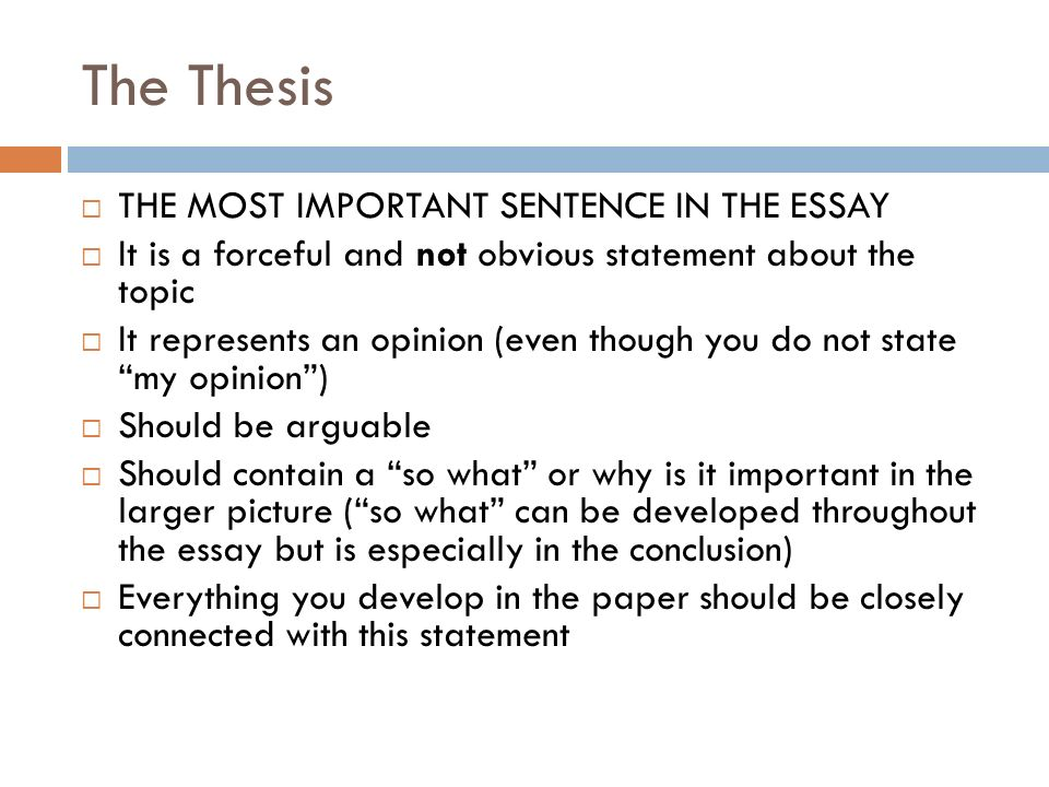 Essay Tips For Research Essays Essay Structure The Thesis  The   The Thesis  The Most Important Sentence