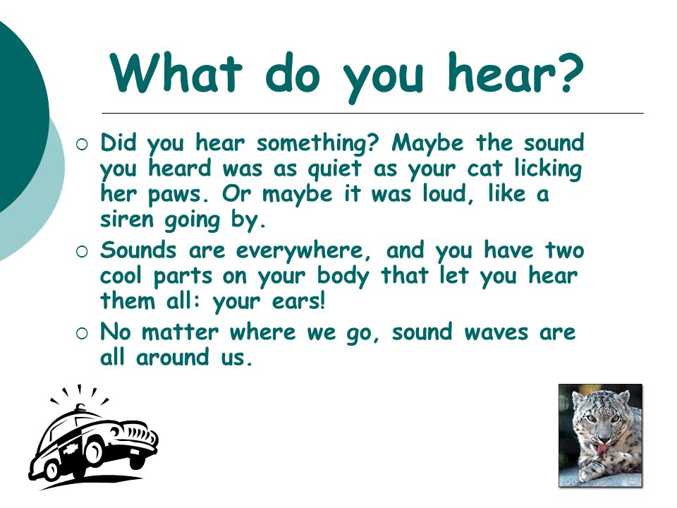 What do you hear.  Did you hear something.