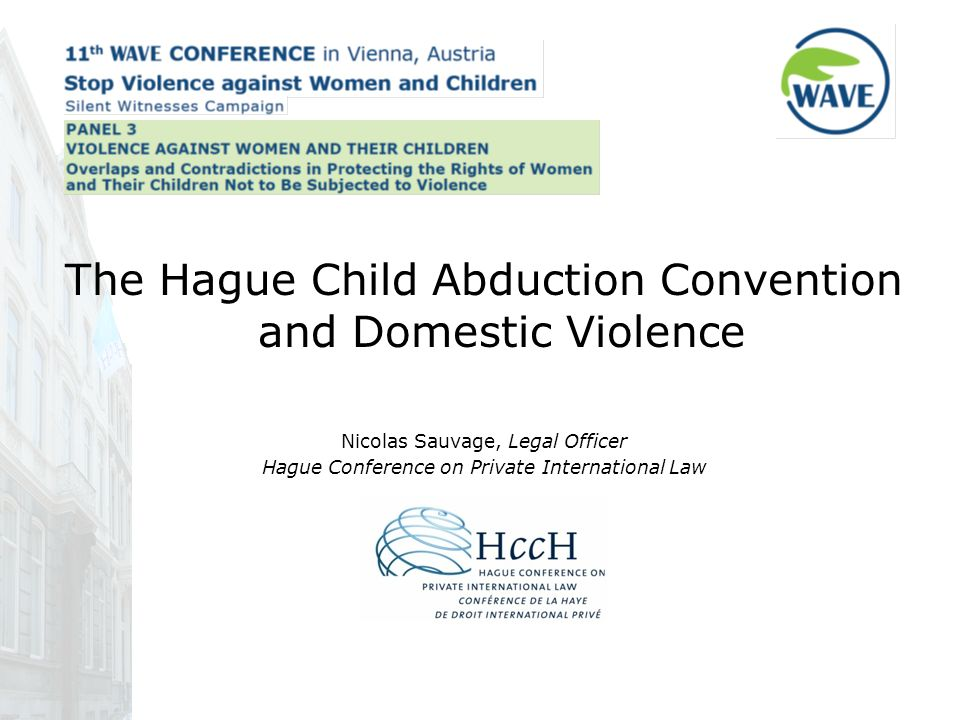 The Hague Child Abduction Convention and Domestic Violence