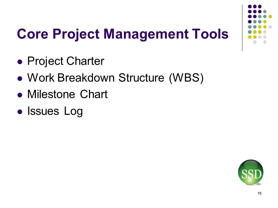 project management for the non project manager ppt download