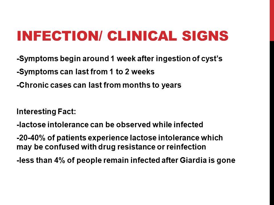 giardia reinfection giardiasis tünetek felnőttek fórumainak áttekintése