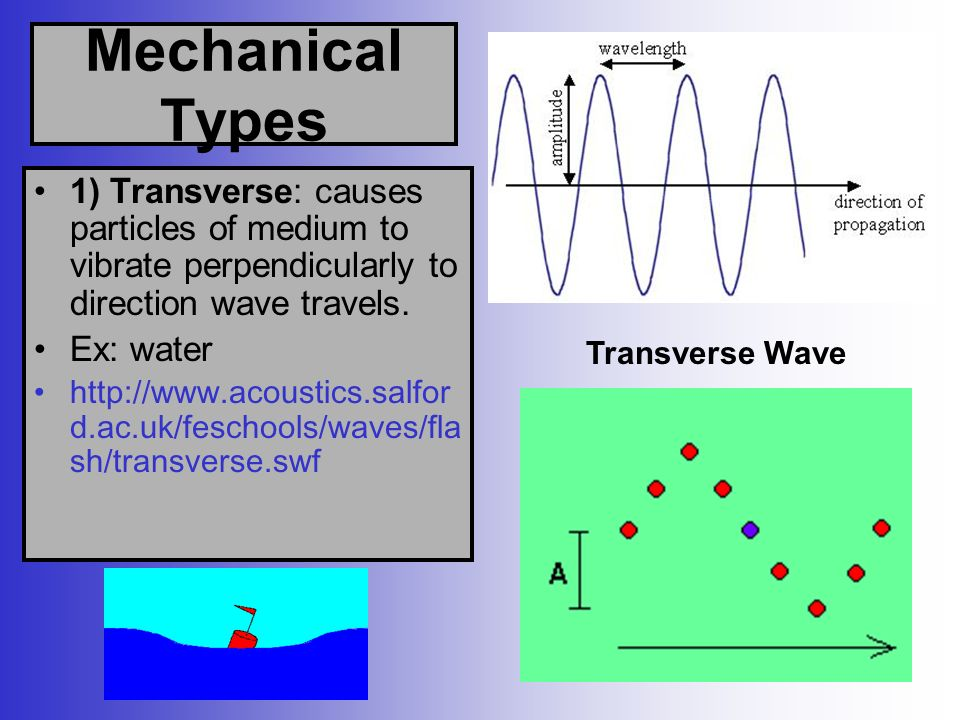 Mechanical Types 1) Transverse: causes particles of medium to vibrate perpendicularly to direction wave travels.