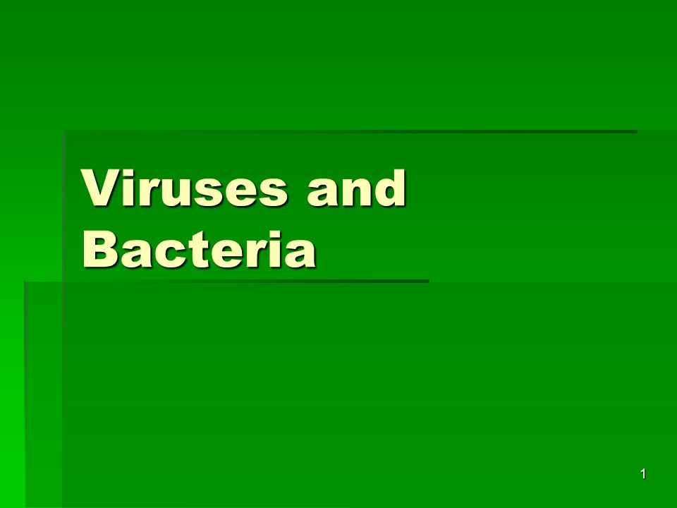 1 Viruses and Bacteria