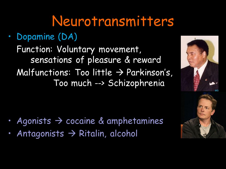 Dopamine (DA) Function: Voluntary movement, sensations of pleasure & reward Malfunctions: Too little  Parkinson's, Too much --> Schizophrenia Agonists  cocaine & amphetamines Antagonists  Ritalin, alcohol Neurotransmitters