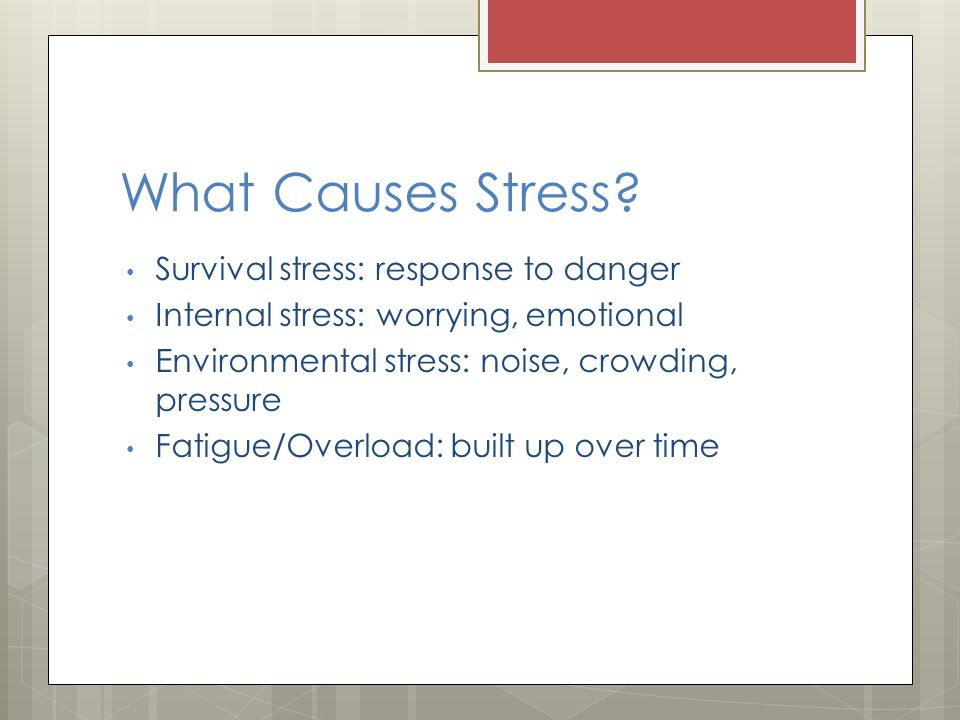 environmental causes of stress in college