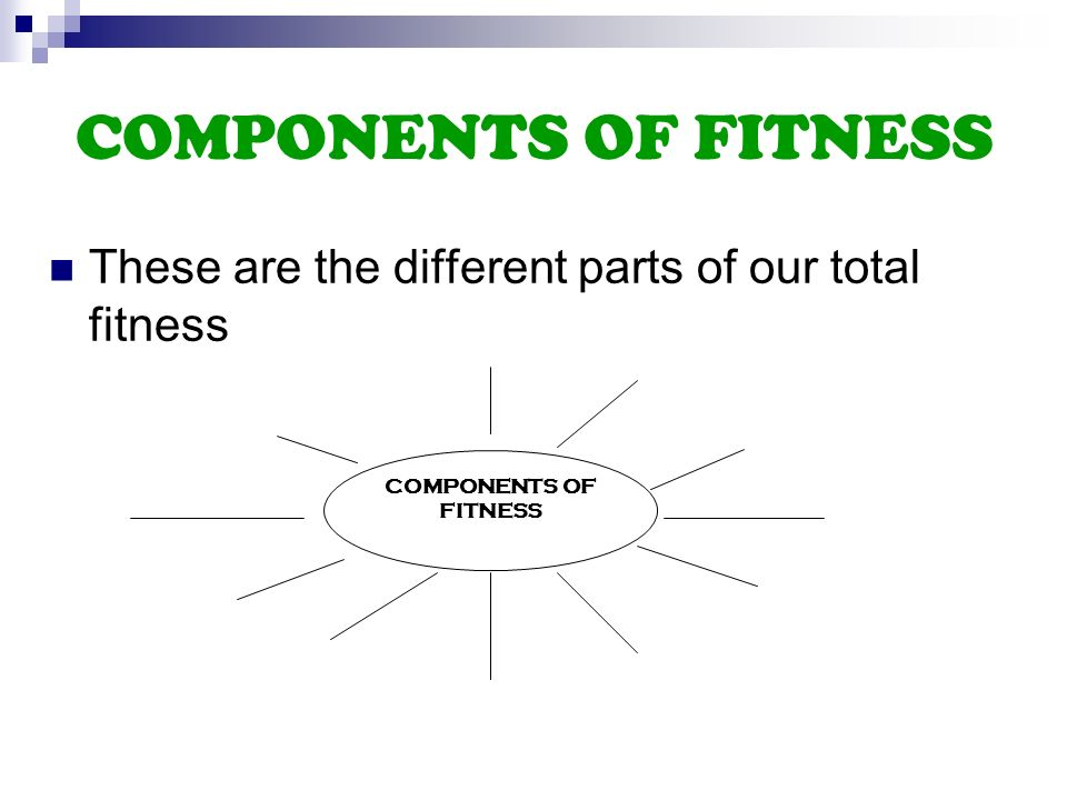 2 Components Of Fitness These Are The Different Parts Of Our Total Fitness Components Of Fitness