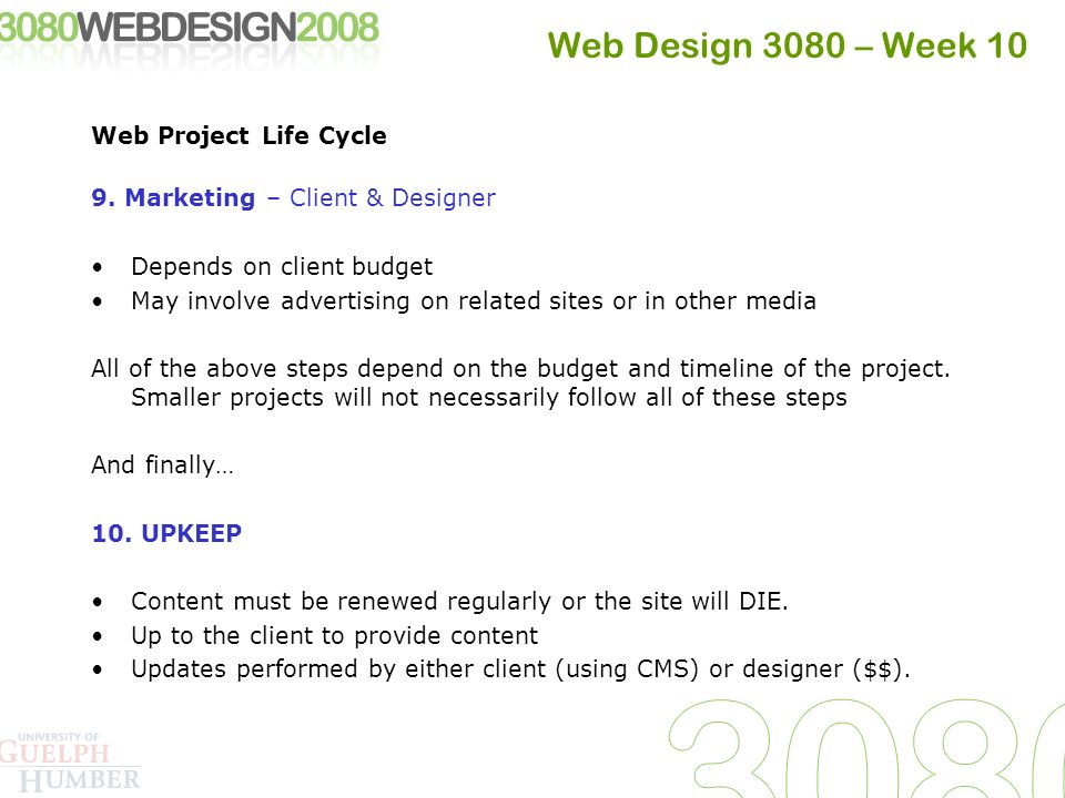 web design 3080 week 10 web project life cycle 1 conceptualization