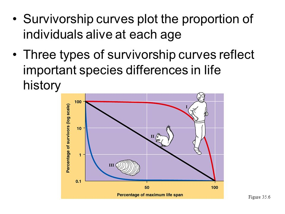 Populations communities video 1 1me the endangered species 33 survivorship curves plot the proportion of individuals alive at each age three types of survivorship curves reflect important species differences in life ccuart Image collections