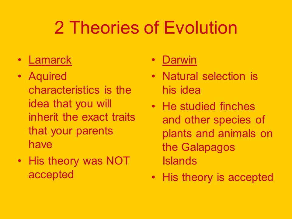 Evolution How Do Organisms Change Some Basic Ideas Is