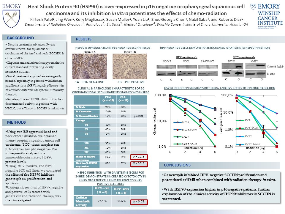 Heat Shock Protein 90 (HSP90) is over-expressed in p16