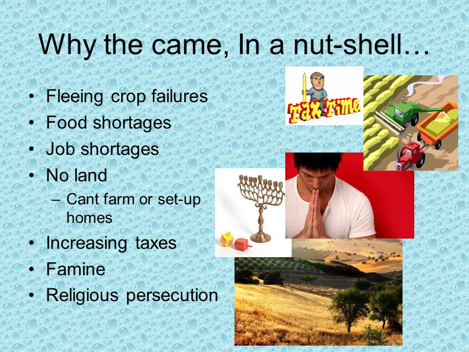 Why the came, In a nut-shell… Fleeing crop failures Food shortages Job shortages No land –Cant farm or set-up homes Increasing taxes Famine Religious persecution