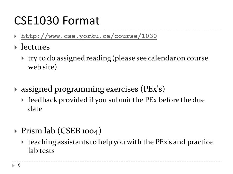 grammar essay example
